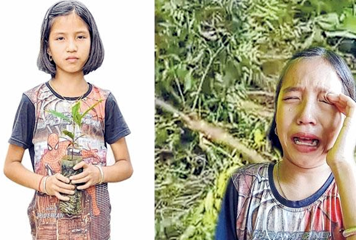 A schoolgirl who cried on fallen trees made the green ambassador of Manipur