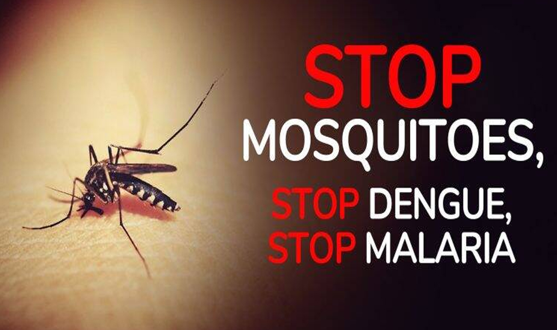 World Mosquito day 2019