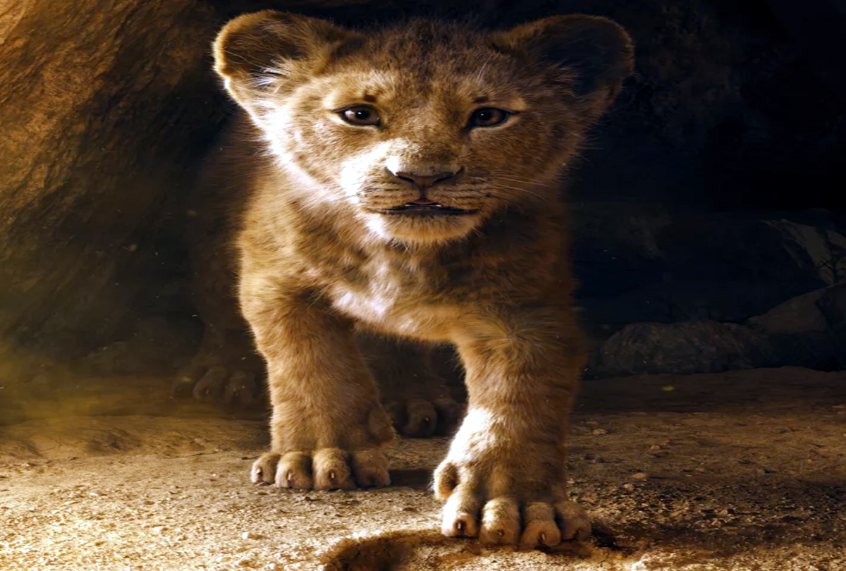 The Lion King earned Rs 11.06 crore on its opening day